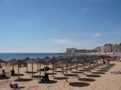 Los Locos Torrevieja Apartment Rental