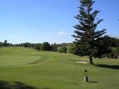 Golf Course Picture Image