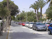 Palm Lined Streets of La Zenia